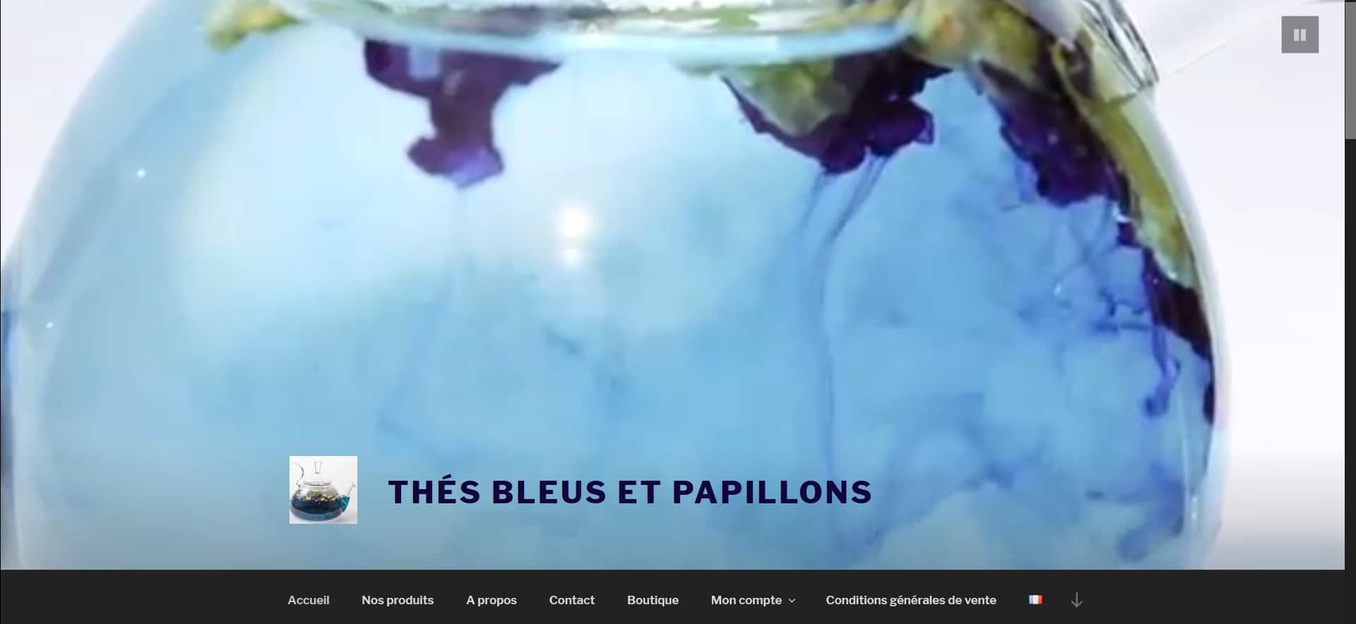 thes bleus papillons la roche bernard